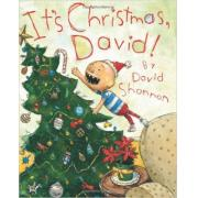 David Shannon :It's Christmas, David! 大卫的圣诞节